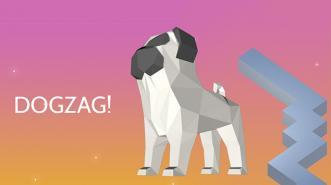 Dog Zag