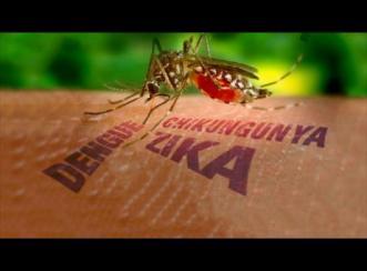 Stop Virus Zika, Malaria & DBD dengan Apps Android