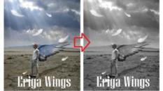Tanpa Install Aplikasi, Ubah Foto Jadi Hitam Putih dengan Mudah