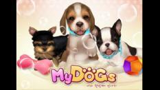 Asyiknya Pelihara Anjing di MyDogs