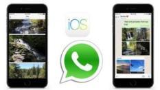 Untuk iOS, Pembaruan Teranyar dari WhatsApp Berikan 3 Fitur Menarik