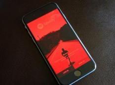 Ratusan Informasi Akun Spotify Bobol di Internet