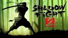 Shadow Fight II, Game Fighting Ragdoll yang Seru!